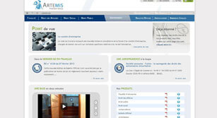 Site internet Artemis Conseil