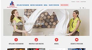 Site internet Cindico