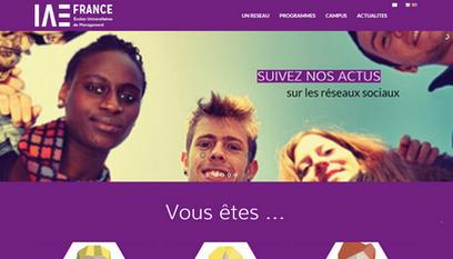 Site internet IAE France / Wordpress