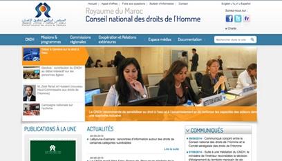 Site internet CNDH / DRUPAL
